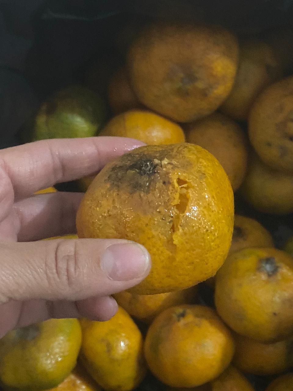 """""""No me quedé con ninguna mandarina"""", capitan de la Policía 4"""