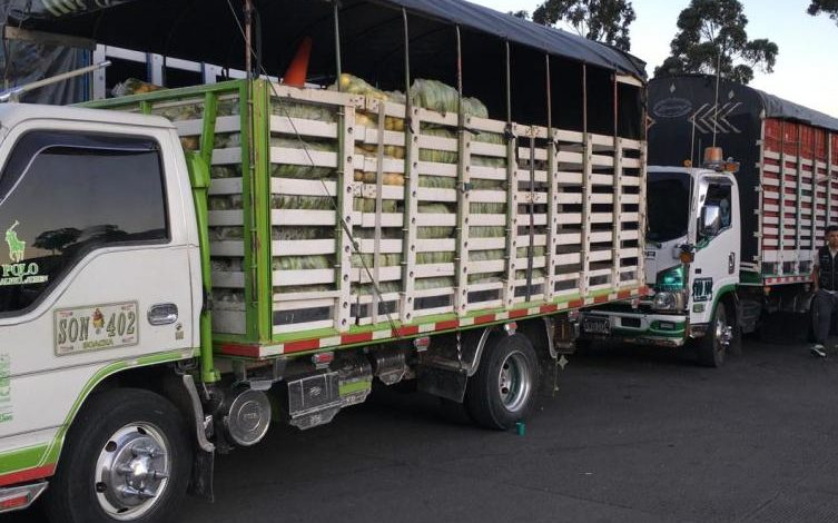 Más de 4,6 millones de toneladas de alimentos y artículos para la salud han sido transportados en cuarentena 1