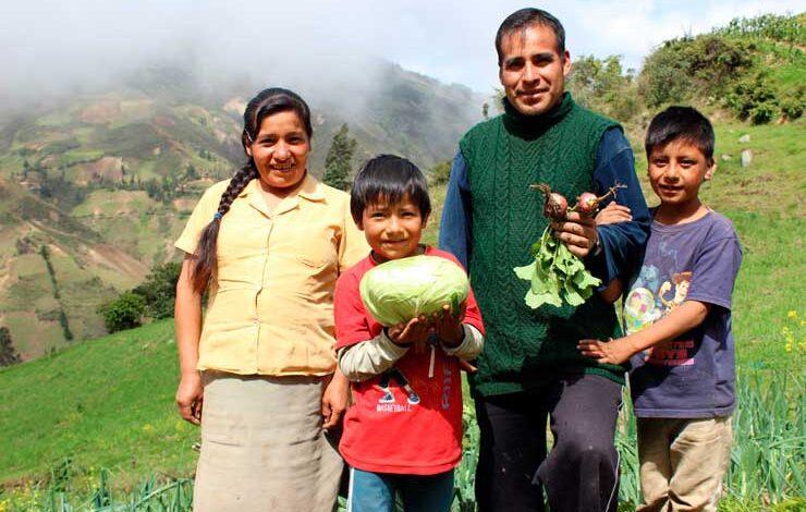 Familias y jóvenes recibirán nuevas ayudas económicas 1