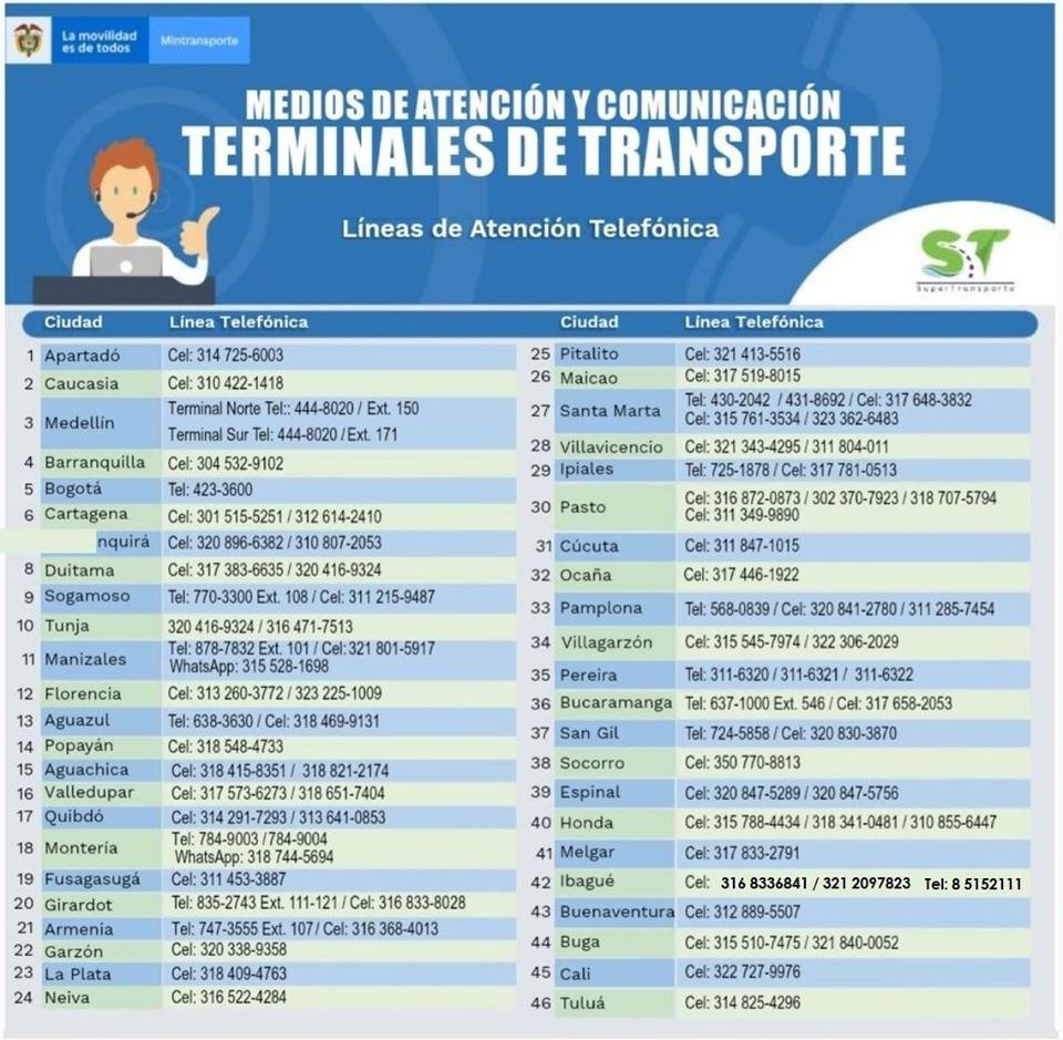Entérate de los protocolos que estableció la terminal de transportes de Ibagué 4