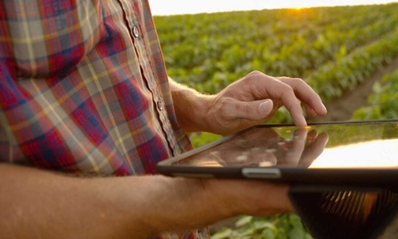 Zonas rurales de tres municipios del Tolima tendrán internet gratuito 1