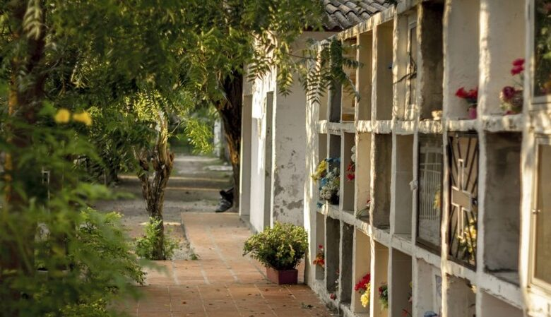 Preocupación en algunos municipios tolimenses por falta de tumbas 1
