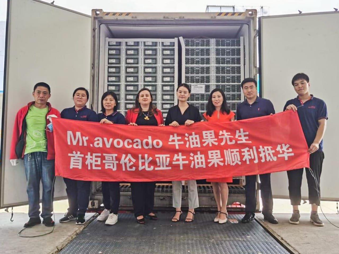 Toneladas de aguacate hass colombiano ya están en China 8