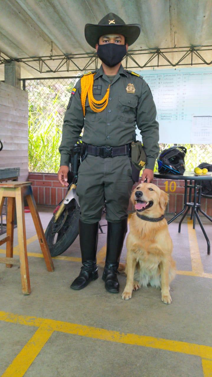 Titán, el perro antinarcóticos que guió incautación de droga 7