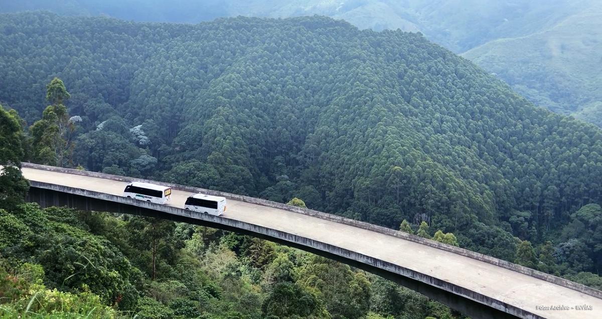 El Túnel de la Línea, un proyecto que recuperó los bosques y el agua de la cordillera Central 4