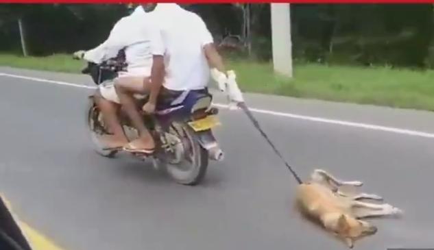 A la cárcel desalmados que arrastraron a un perro en una moto 3