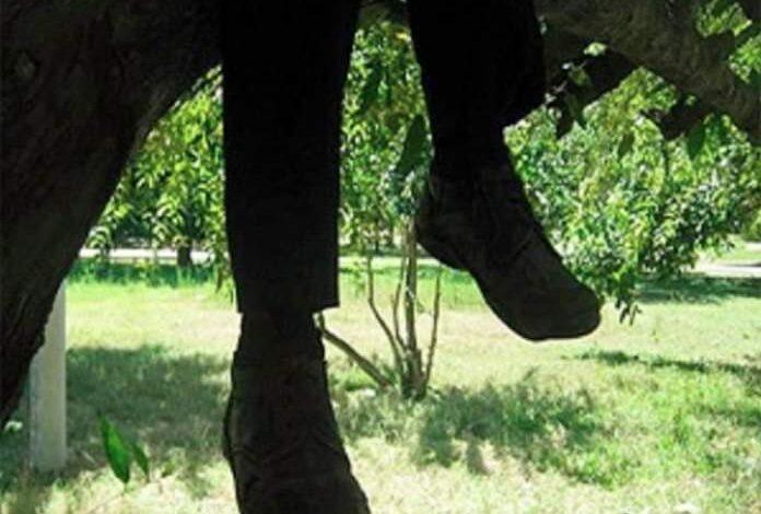 Tragedia en Chaparral, un hombre se quitó la vida 1