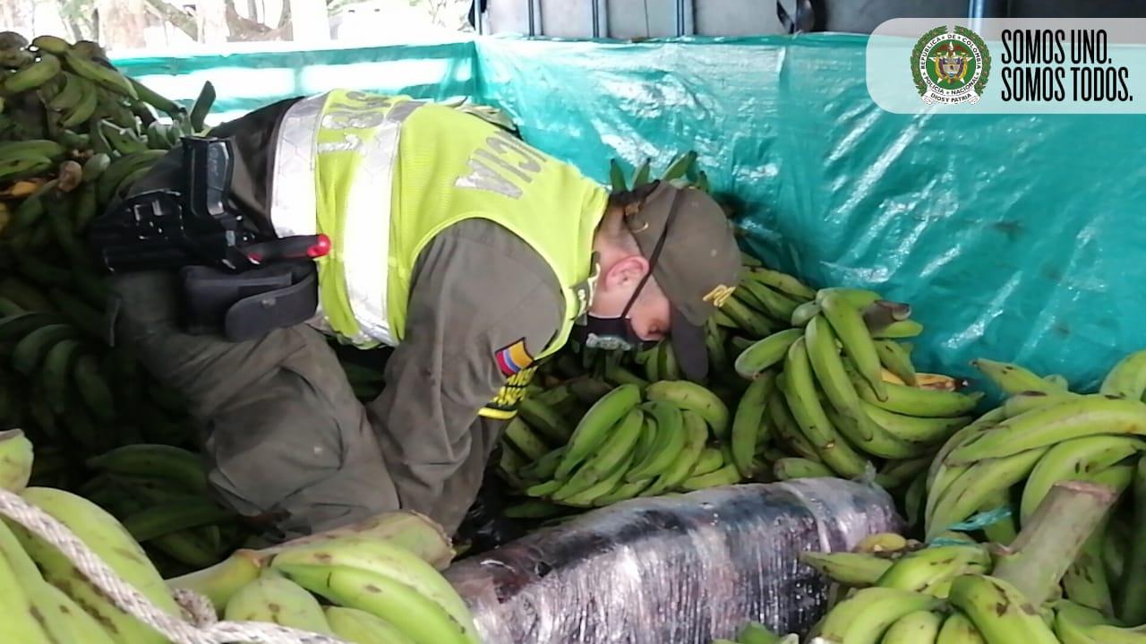 Llevaba más droga que plátanos 5