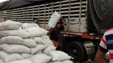 Photo of Mas de 12.000 toneladas de abono orgánico se entregarán en el Tolima