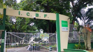 Photo of ICBF busca conformar 30 nuevos hogares sustitutos en el Tolima