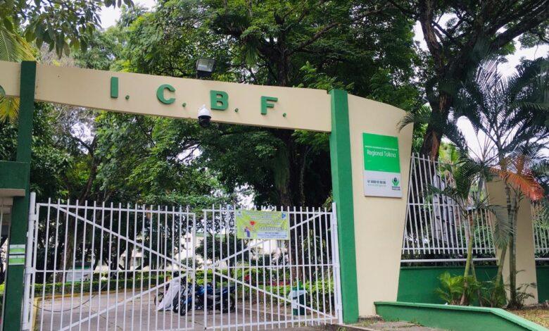 Está lista la terna para elegir director del ICBF en el Tolima 1