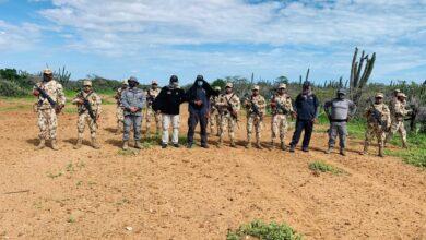 Photo of Autoridades incautan más de 9 toneladas de cocaína en siete departamentos del país