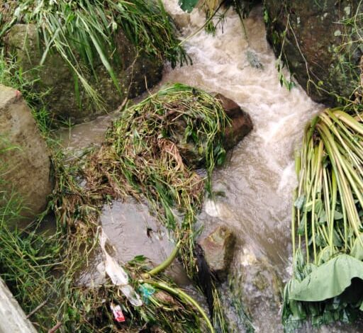 ¡Atención! Decretada alerta amarilla en todo el Tolima por fuertes lluvias 1