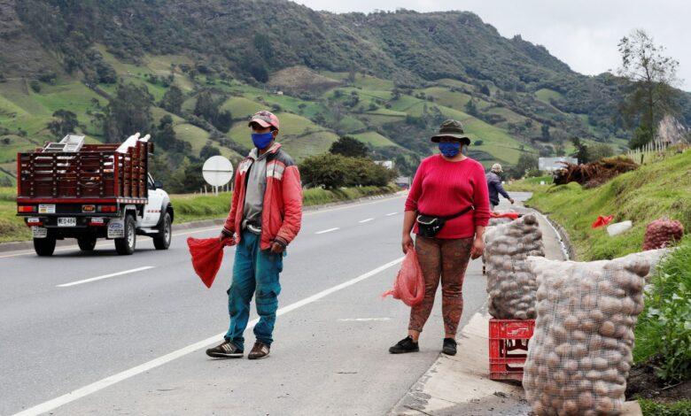 Apoyemos al campesino, compre papa colombiana 1