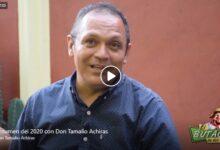 Resumen del 2020 con Don Tamalio 14