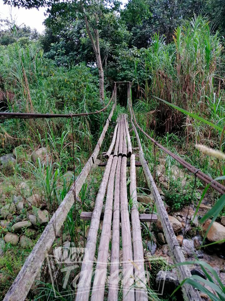 Comunidad pone en riesgo sus vidas por mal estado de un puente 12