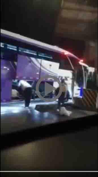 """""""El conductor puso al perro cuidadosamente en la bodega"""", Velotax 6"""