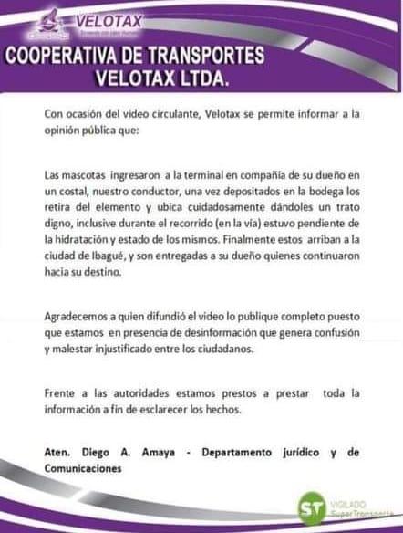 """""""El conductor puso al perro cuidadosamente en la bodega"""", Velotax 7"""
