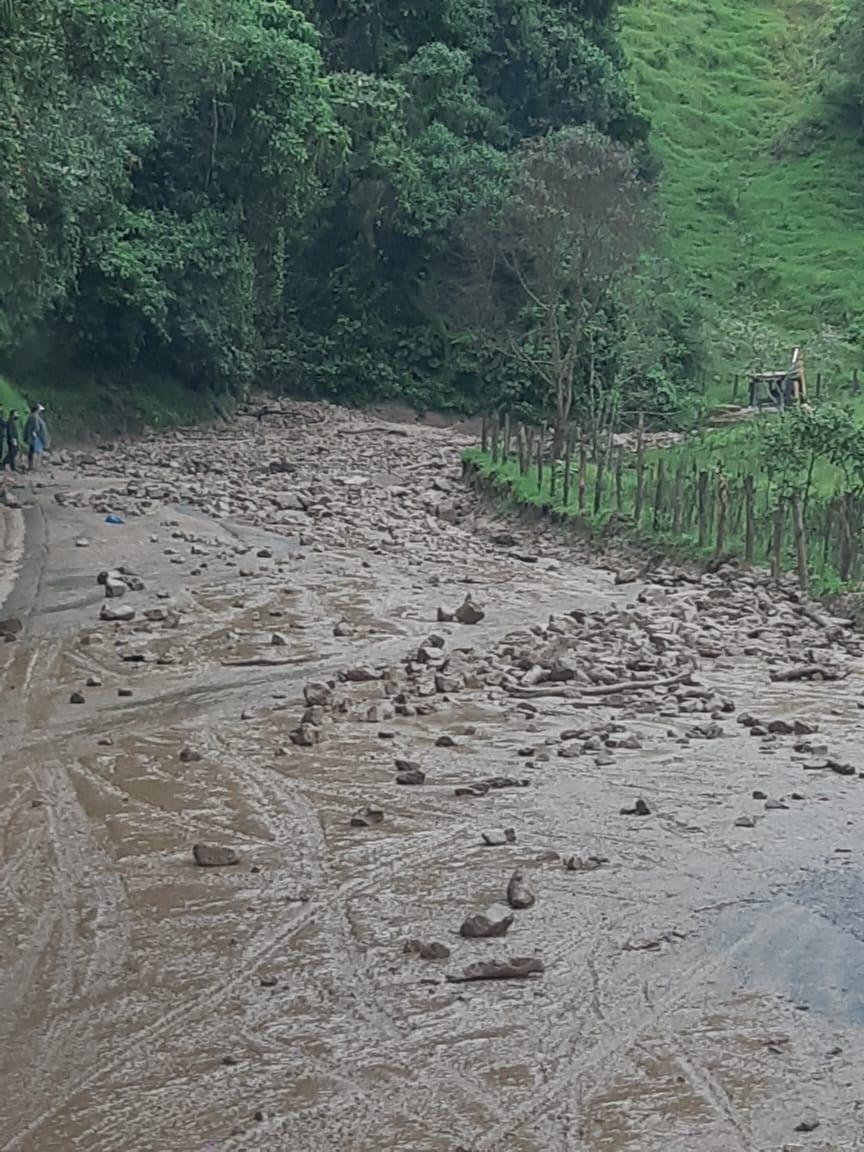 Habilitan paso en la vía Fresno- Manizales tras derrumbe 7