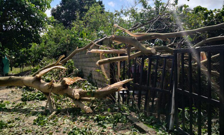 Más de 400 emergencias se han presentado en Ibagué por lluvias 1