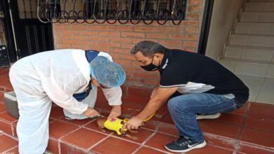 El Tolima combate la rabia animal en jornadas masivas de vacunación 20