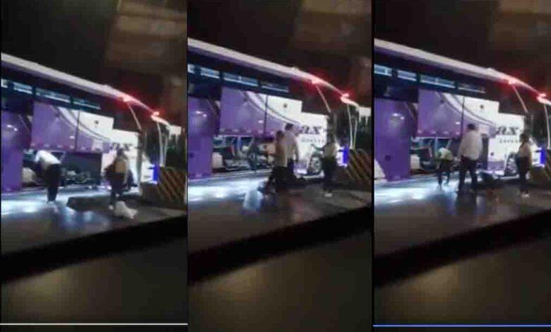 """""""El conductor puso al perro cuidadosamente en la bodega"""", Velotax 5"""