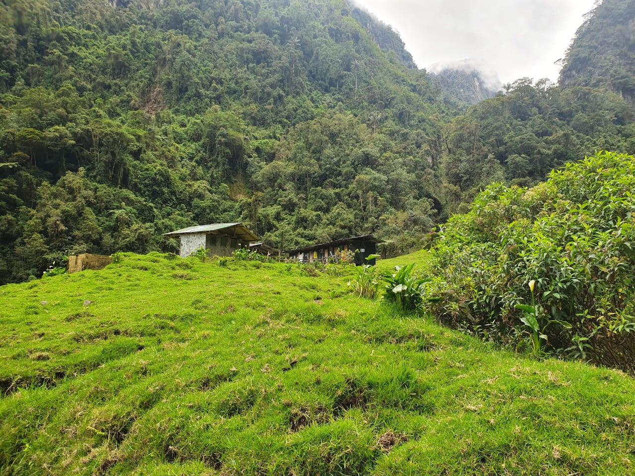 Rescatan a montañistas extraviados el Nevado del Tolima 4
