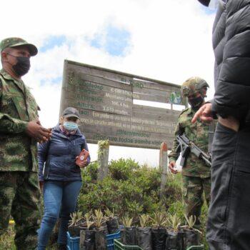 600 frailejones se sembraron en la reserva El Toro del municipio de Murillo 3