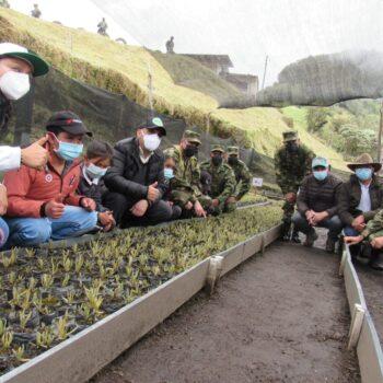 600 frailejones se sembraron en la reserva El Toro del municipio de Murillo 2