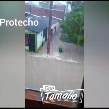 Más de 25 emergencias se presentaron en Ibagué por el fuerte aguacero 7