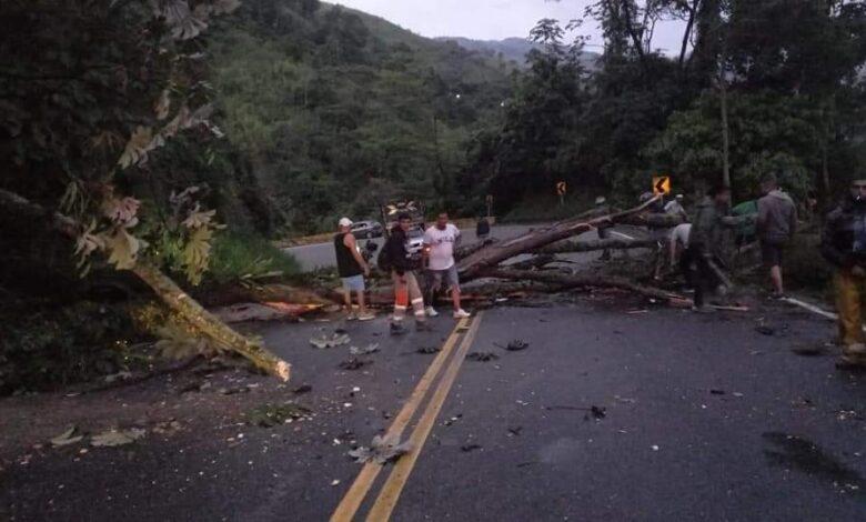 Cierres en vías del Tolima afectan el abastecimiento en varias poblaciones 3