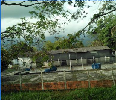 Procuraduría indaga presunto maltrato en el Centro de Atención y Protección Animal de Ibagué, Tolima 1