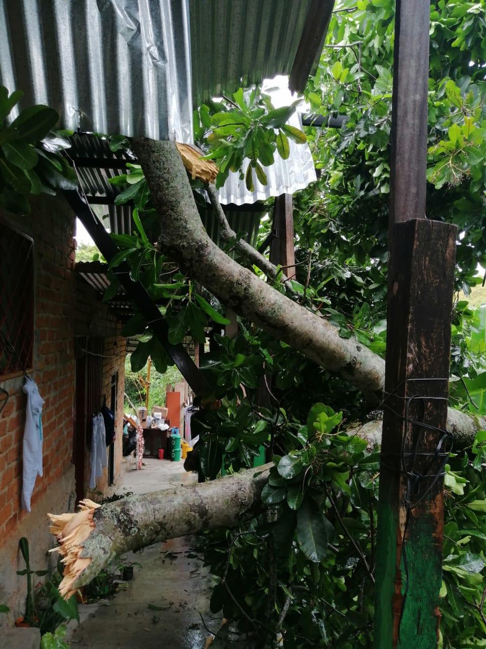 Decretan calamidad pública en el Tolima por alto número de afectaciones en la temporada de más lluvias 3