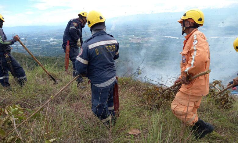 250 hectáreas de vegetación calcinadas por incendio forestal en el Tolima 1
