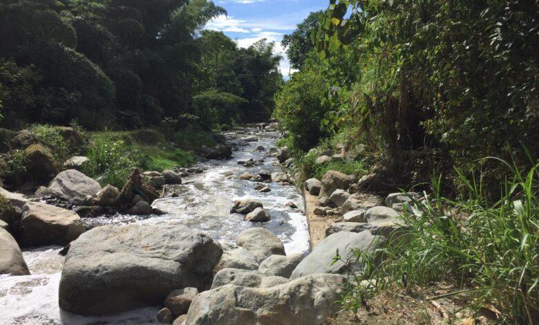 En Ibagué se adelantará una doble jornada de limpieza de fuentes hídricas 1