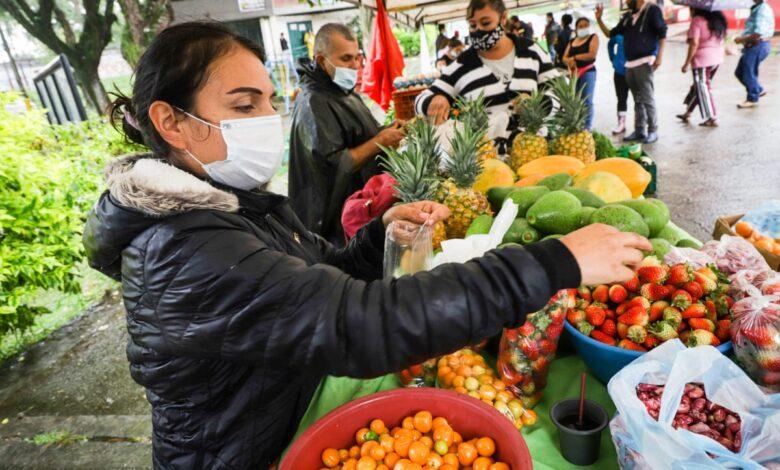 Este fin de semana disfrute de los mercados campesinos 1