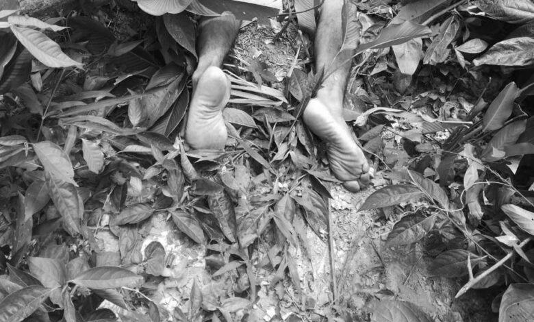Hallan muerto líder indígena del Sur del Tolima 1