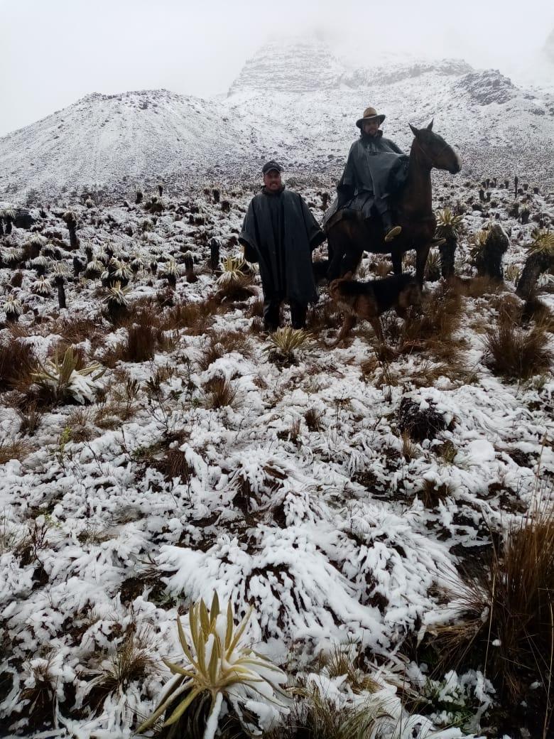 Organismos de socorro, montañistas y arrieros siguen la busqueda de joven perdido en el Nevado del Tolima 4