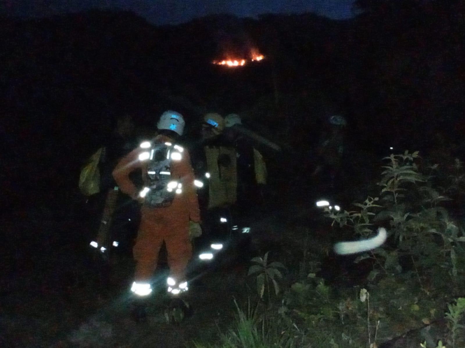 Aún no apagan incendio forestal en Melgar, Tolima 5