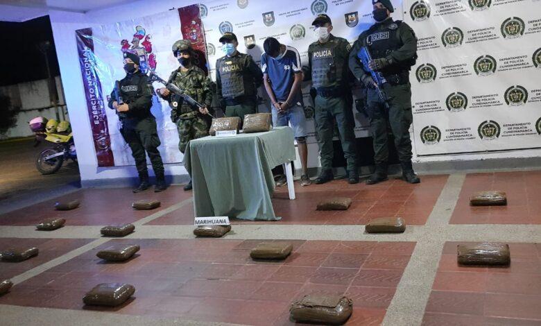 Incautan más de 20 kilos de marihuana tipo krip que sería vendida en Flandes 1