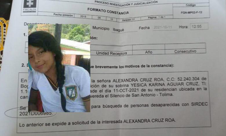 Niña de 13 años desapareció en San Antonio, Tolima 5